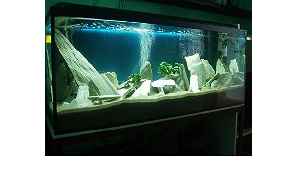 3 kg de piedra de pizarra blanca natural para un acuario vivario Tank decoración roca: Amazon.es: Productos para mascotas
