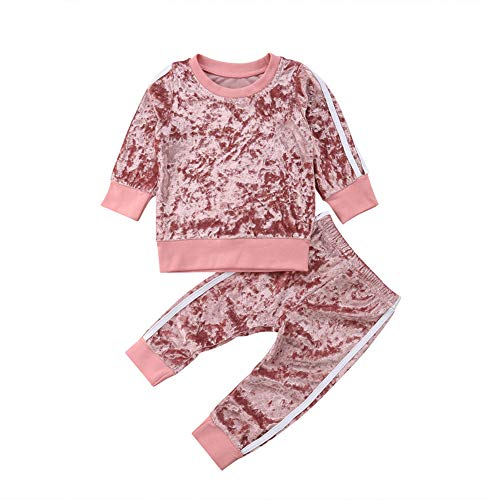 2 Pcs Fashion Toddler Kids Baby Girls Velvet Clothes Outfit Pant Set Fall Winter (2-3 Years, Pink)