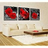 Spirit Up Art Gorgeous Red Roses HD Giclee Art Print on Canvas set of 3 Modern Home Wall Painting Decor Art Each 50*50cm #08-niy-246 (Framed)