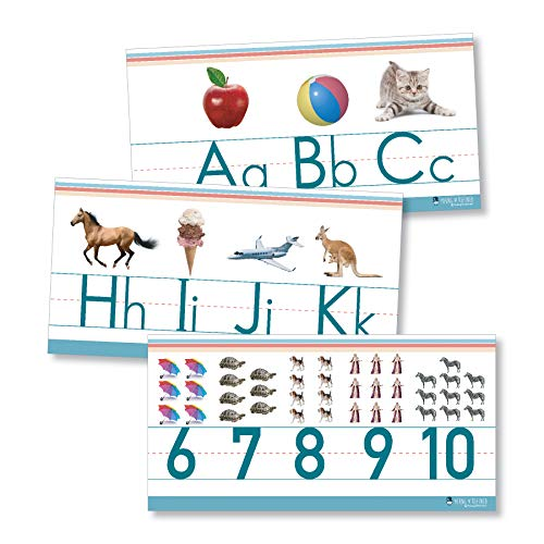 - Alphabet and Numbers Classroom Wall Line for Teaching ABCs Young N Refined (White Glossy Paper)