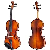 Paititi 4/4 Full Size Artist-200 Serie Solid Wood Ebony Fitted Violin with Bow Lightweight Case, Shoulder Rest, Extra Strings and Rosin