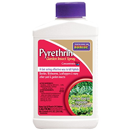 Bonide (BND857) - Pyrethrin Garden Insect Spray Mix, Outdoor Insecticide/Pesticide Concentrate (8 oz.), Brown/A (Best Way To Get Rid Of Aphids)