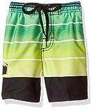 Kanu Surf Boys' Echelon Stripe Quick Dry Beach Board Shorts Swim Trunk