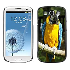 Hot Style Cell Phone PC Hard Case Cover // M00115234 Ara Parrot Bird Yellow Breast // Samsung Galaxy S3 S III SIII i9300