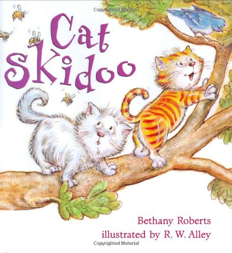 Cat Skidoo by Brand: Henry Holt and Co. (BYR)