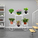 DoubleWin Garden Cart Stand/Flower Pot Plant Holder Display Rack, 6 Tiers, Parisian Style – Perfect Decor for Home, Garden, Patio (White/Metal) For Sale