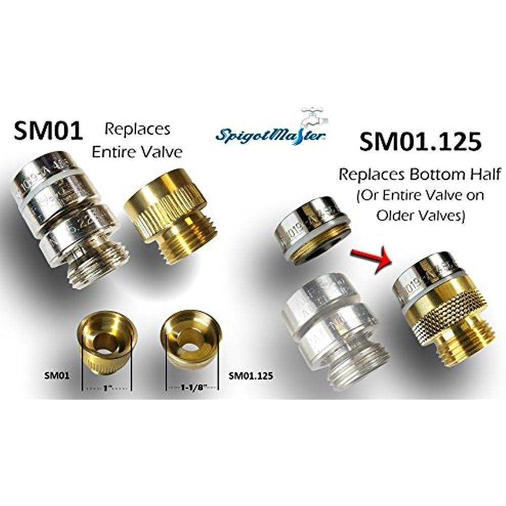 Spigotmaster Sm01 Vacuum Breaker Adapter Converts An