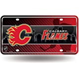 NHL Metal License Plate Tag