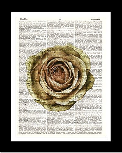 How to find the best dictionary art print floral for 2019?