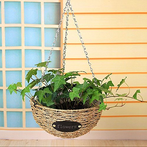 Outdoor Lighted Hanging Baskets - 9