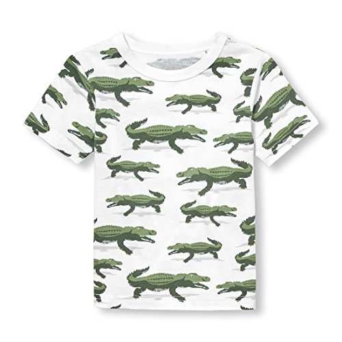 (The Children's Place Baby Boys Short Sleeve Graphic Tee, Garden Cress 00589, 2T)