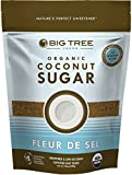 Big Tree Farms Coconut Sugar Fleur de Sel, 14-Ounce Pouches (Pack of 3)