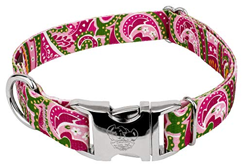 Country Brook Petz | Fire Paisley Premium Dog Collar (5/8 Inch, Small)