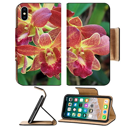 Red Dendrobium Orchid (Luxlady Premium Apple iPhone X Flip Pu Leather Wallet Case IMAGE ID 21095555 Dendrobium red orchid)