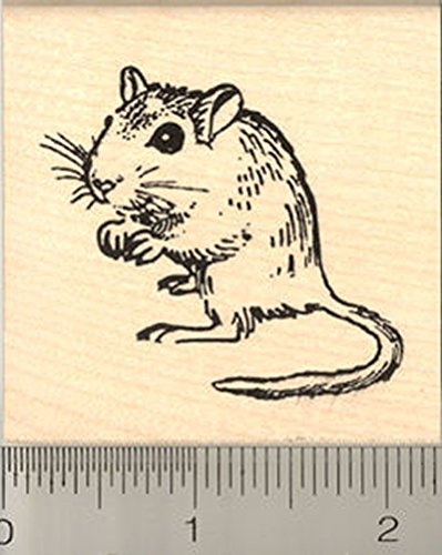 Cute Gerbil Rubber Stamp