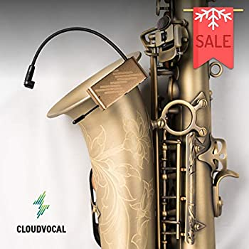 isolo choice saxophone version wireless microphone system eq effect all in one. Black Bedroom Furniture Sets. Home Design Ideas