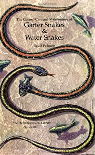Garter and Ribbon Snakes: Facts & Advice on Care and