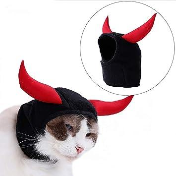 Iris Sprite Disfraz de Murciélago de Halloween para Gatos Halloween Gatos Disfraz de Gato Sombrero de Bruja Sombrero de Calabaza araña (Cuerno): Amazon.es: ...