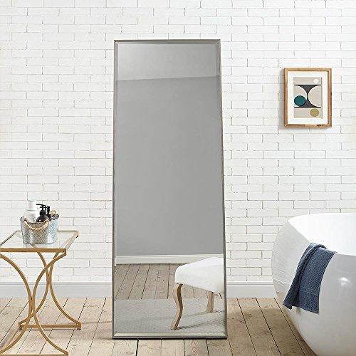 Naomi Home Modern Mirror 66' x 24'