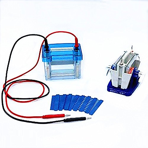 Lab Mini Modular Dual Vertical Gel Electrophoresis Cell System 82 x 82 mm