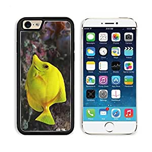 Fish Underwater Swimming Beautiful Apple iPhone 6 TPU Snap Cover Premium Aluminium Design Back Plate Case Customized Made to Order Support Ready Liil iPhone_6 Professional Case Touch Accessories Graphic Covers Designed Model Sleeve HD Template Wallpaper P by lolosakes