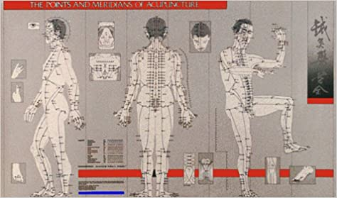 Points and meridians of acupuncture chart paradigm title tin