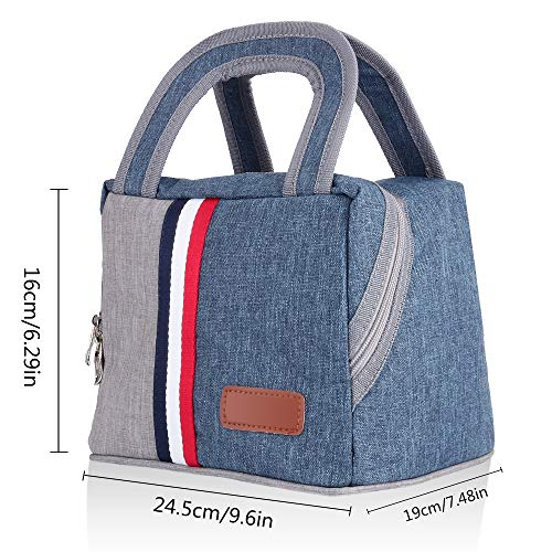 ASANMU Insulated Lunch Bag, Lunch Box for Men, Women, Kids,Large Capacity Lunch Box Foldable Lunch Tote Cooler for Office/School/Picnic