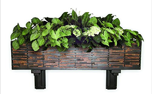Dark Brown Iron Wall Planter with Brown Taupe Tole Liner by Amazing Decor
