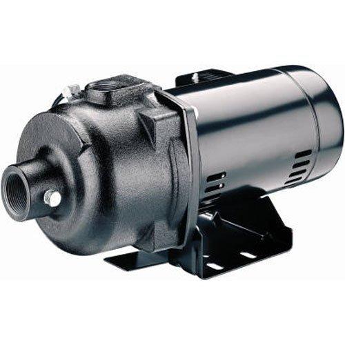 PENTAIR WATER 123357 1/2 hp 115/230V Shallow Well Jet Pump