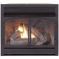 ProCom Dual Fuel Fireplace Insert Zero Clearance from ProCom