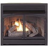 ProCom Dual Fuel Fireplace Insert Zero Clearance