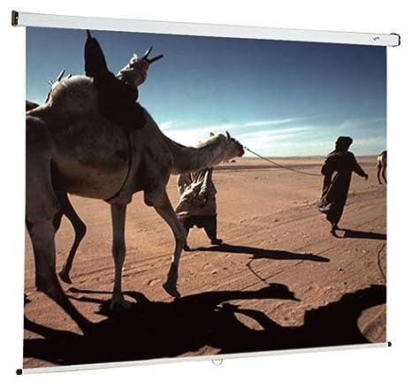 Oray-Pantalla de proyección-Pantalla para proyector con pantalla ...