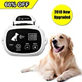 Depps Wireless Dog Containment System with Rechargeable Transmitter and Rechargeable Collar Receiver