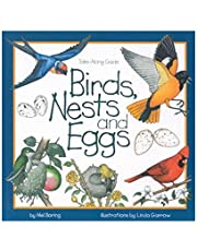 Birds, Nests & Eggs