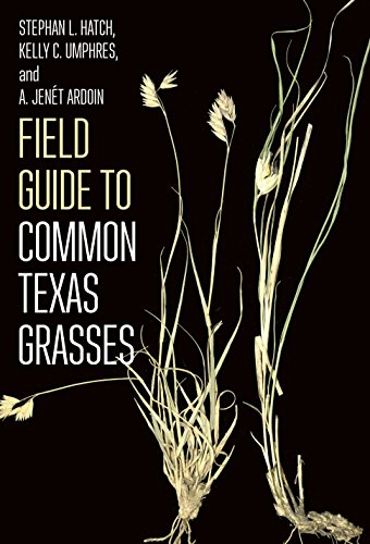 Field Guide to Common Texas Grasses (Texas A&M AgriLife Research and  Extension Service Series)