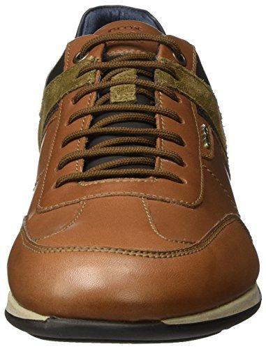 Geox Ginnastica brown Clemet browncotto Marrone U Da Basse Uomo Scarpe B rXrqT