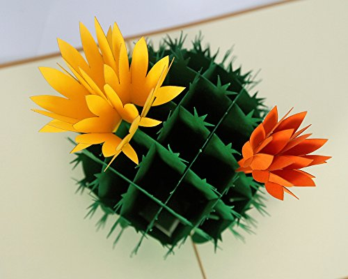 CUTPOPUP CACTUS Flower 3D Pop up Greeting Cards, Hand Assembled, Ideal Writing Surface for Messages