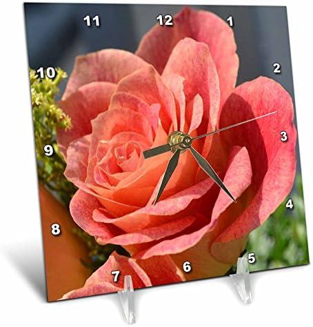 3dRose dc_24954_1 Antique Peach Rose Peach Colored Rose-Desk Clock, 6 by 6-Inch