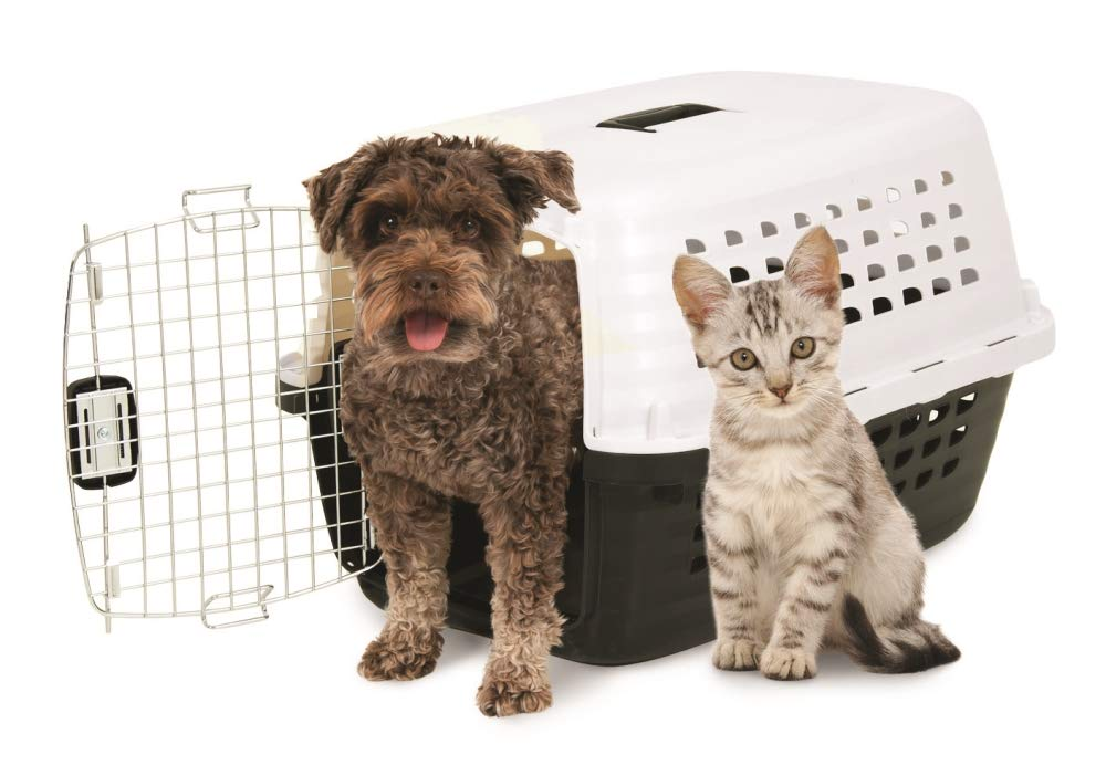 Petmate Compass Fashion Kennel Cat and Dog Kennel by Petmate (Image #2)