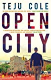 Front cover for the book Open City by Teju Cole