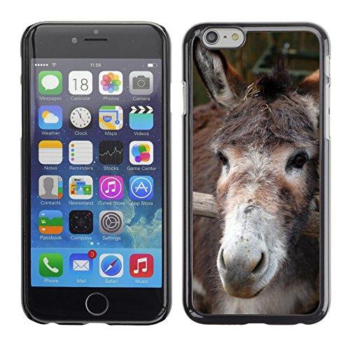 """Just Phone Cases Hard plastica indietro Case Custodie Cover pelle protettiva Per // M00127997 Farm Animal Ane Brun Gris Head // Apple iPhone 6 PLUS 5.5"""""""