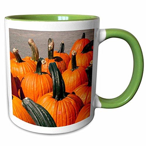 3dRose Danita Delimont - Autumn - USA, Virginia, Leesburg, Autumn pumpkins - US47 LFO0005 - Lee Foster - 11oz Two-Tone Green Mug - Outlet Leesburg