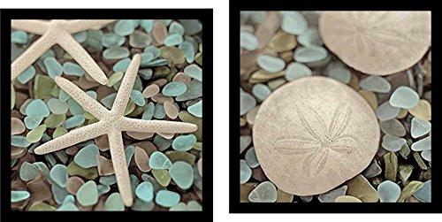 Aquatic Seaglass Starfish Blaustein Photograph product image