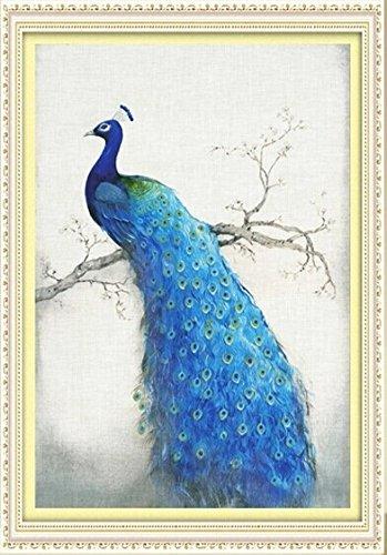 Amazoncom 5d Diamond Embroidery Paintings Rhinestone Pasted Diy