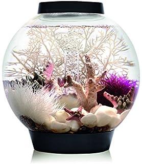 Oase biOrb Tube Aquarium 15 LED, Noir  Amazon.fr  Animalerie 7dddd959490