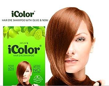 Amazon.com : Great Lengths iColor Hair Dye Shampoo Chestnut ...