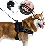 Dog Harness with Handle No Pull No Chock Adjustable Vest Harness for Large Dogs M
