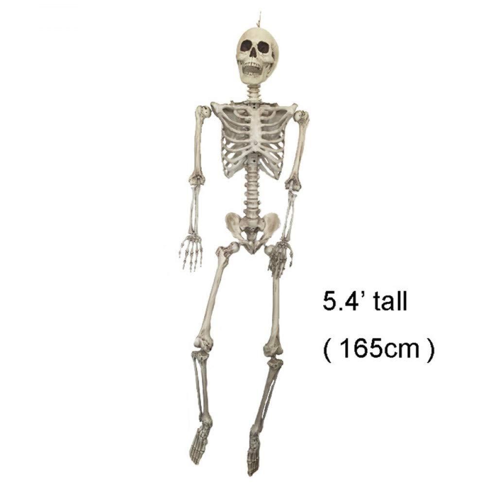 A ERQINGZS Halloween Decoration Halloween Skeleton 100% Plastic Life Size Skeleton Haunted House Escape Horror Props Decorations