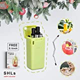 SHLs Collapsible Stainless Steel Drinking Straw | Reusable & Eco-friendly Silicone Straw with Case & Cleaning Brush | Perfect Gift & Present (Green)