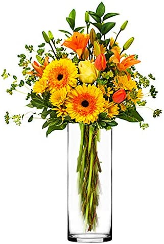CYS EXCEL Glass Cylinder Vase, Floating Candle Holder, Flower vase, Decorative Centerpiece for Home, Business, Events or Weddings Pack of 12 4 Wide x 12 Tall